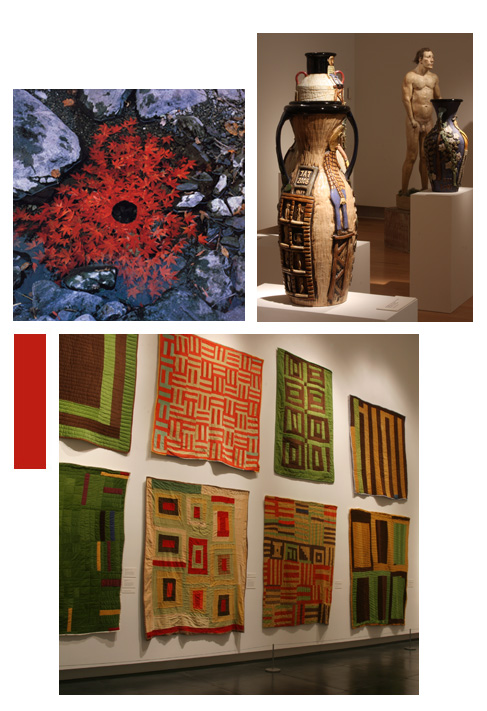 a group of exhibition pictures including a photograph of red maple leaves floating in water around a black hole